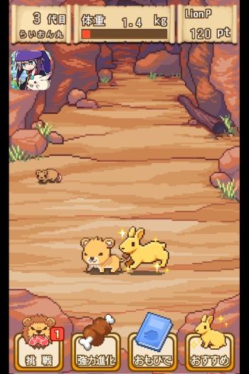 黄金のウサギ