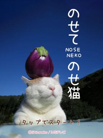 のせて のせ猫